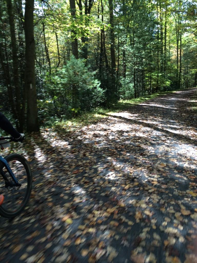 Riding on a portion of the Appalachian Trail near Pine Grove Furnace SP.